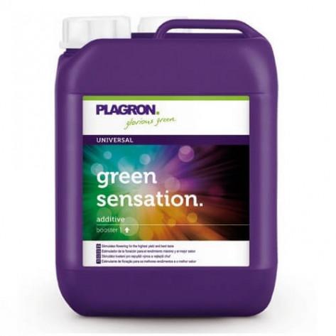 FERTILIZANTE PLAGRON GREEN SENSATION 100ml