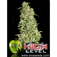 HIGH LEVEL EVA SEEDS 9UN