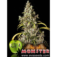 MONSTER EVA SEEDS 3UN