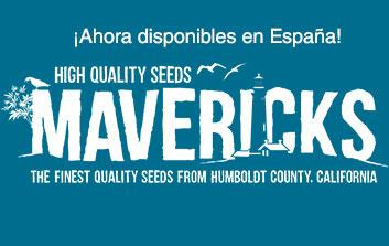 MAvericks seeds